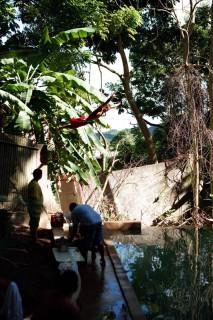 Sin título #3, Río Nuevo (2009) Río Nuevo (2009) - Fotografía por Tristán Reyes